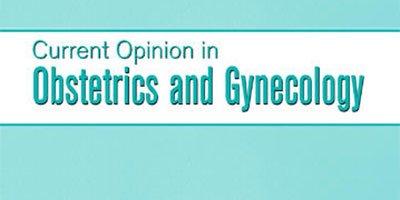 Le caratteristiche morfocinetiche dell'embrione