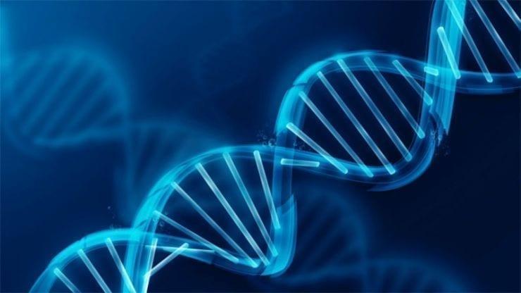 Il tuo DNA influenza il metabolismo: riequilibriamo il BMI con la nutrigenetica.